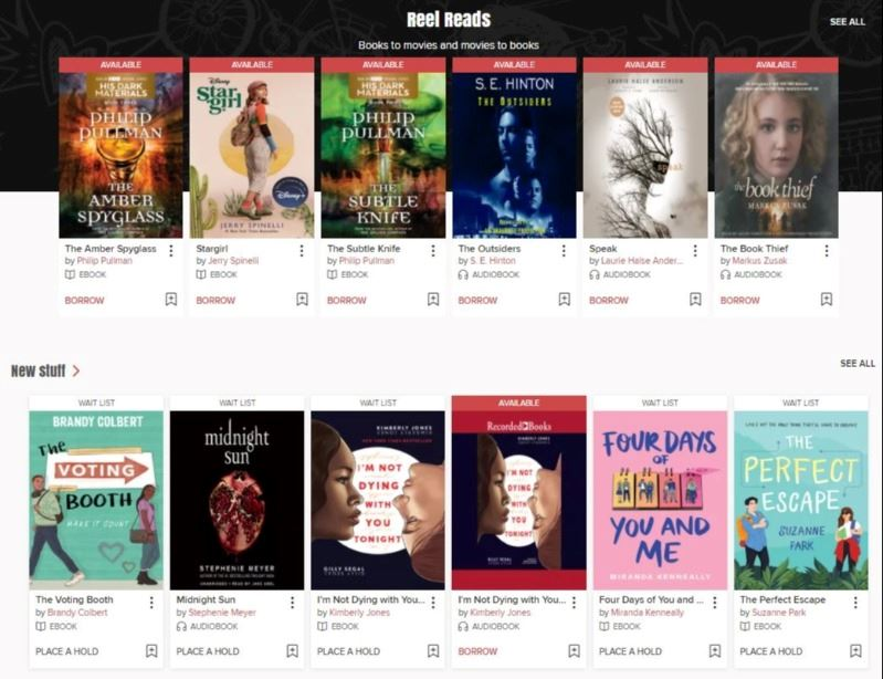 Young adult e-books and audiobooks are displayed on a webpage.